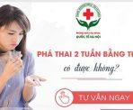 cach-pha-thai-2-tuan-tuoi